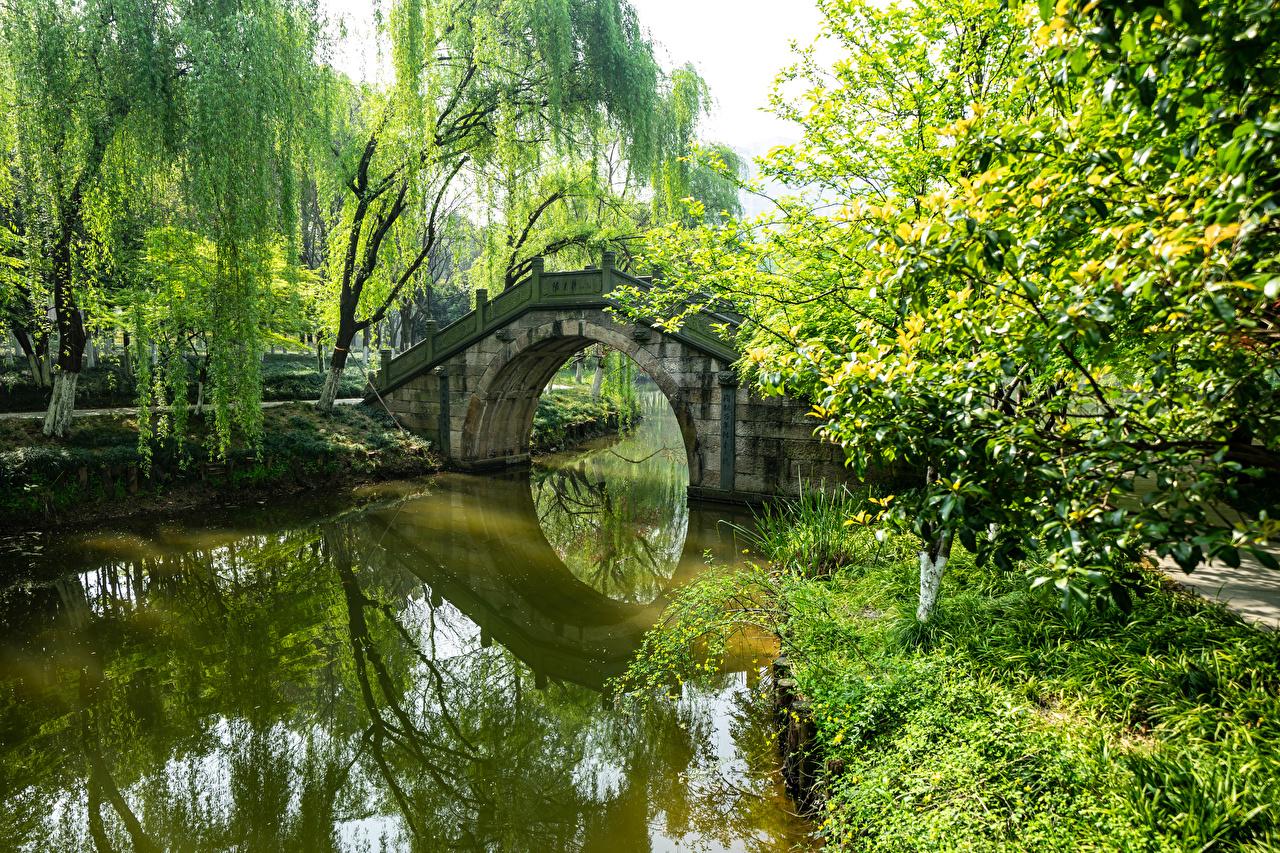 Картинки Китай Мосты Природа Пруд Парки дерева мост парк дерево Деревья деревьев
