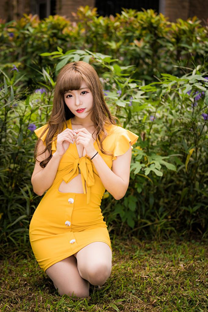 Картинки шатенки девушка азиатки смотрят Платье  для мобильного телефона Шатенка Девушки молодая женщина молодые женщины Азиаты азиатка Взгляд смотрит платья
