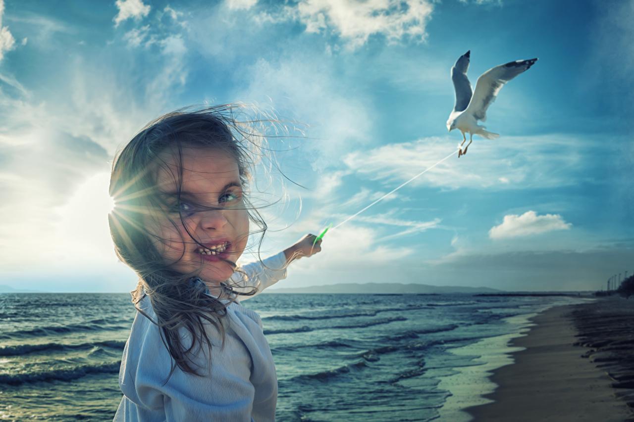 Фотографии Девочки Чайка Птицы Ветер Дети Лицо Море оригинальные Побережье Ребёнок Креатив берег