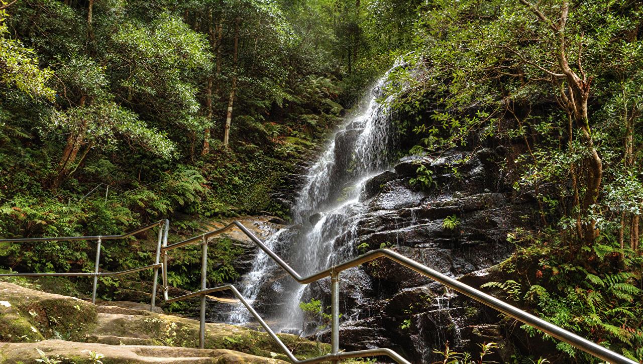 Фотографии Сидней Австралия Sylvia falls Blue Mountains Скала Природа Водопады лес Парки забора Утес скале скалы парк Леса Забор ограда забором