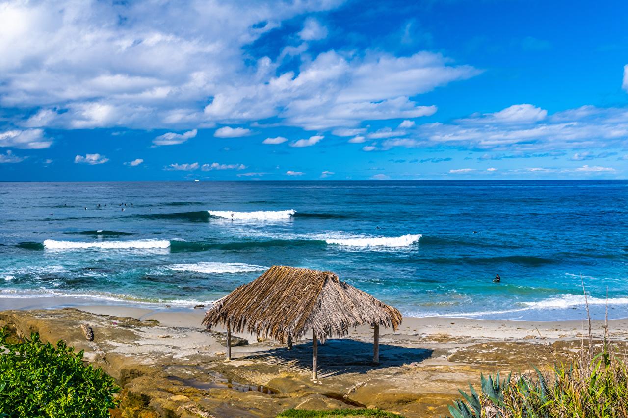 Фотография калифорнии штаты Windandsea Beach Пляж Природа берег Калифорния США америка пляжа пляже пляжи Побережье