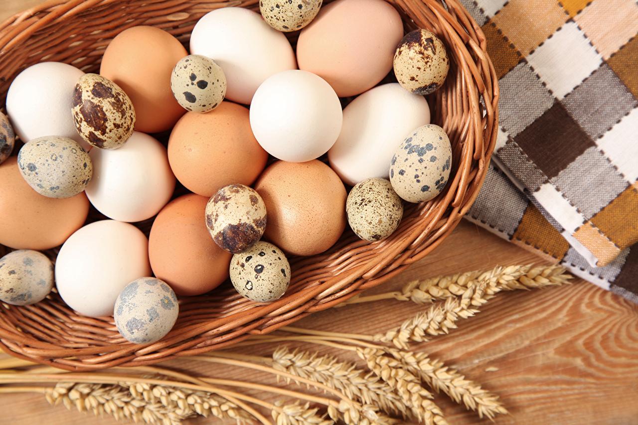 Фото яйцо Колос Еда яиц Яйца яйцами колосья колоски колосок Пища Продукты питания