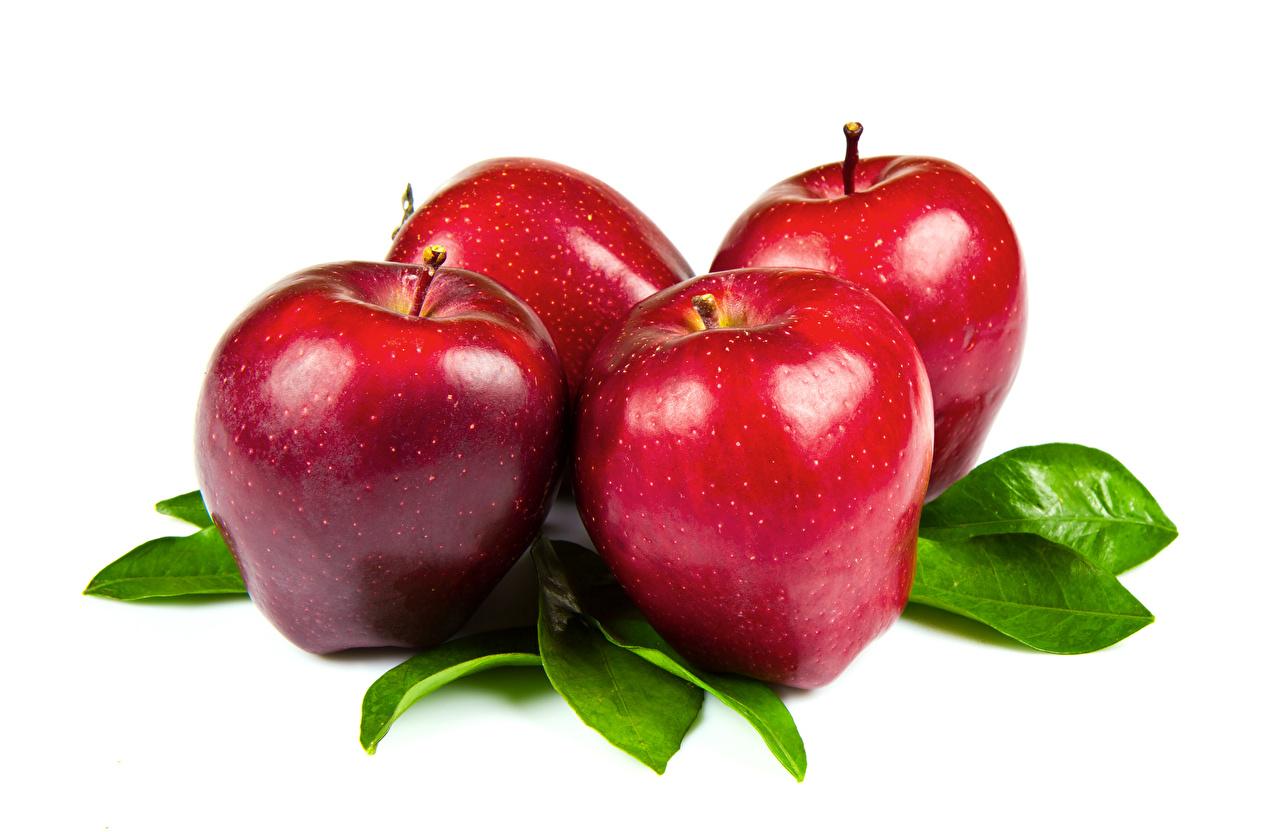 Фото красная Яблоки Еда вблизи Белый фон красных красные Красный Пища Продукты питания белом фоне белым фоном Крупным планом