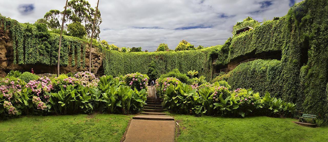Фотографии Австралия Mount Gambier Sinkhole Botanic Garden Природа Сады газоне кустов дизайна Газон Кусты Дизайн