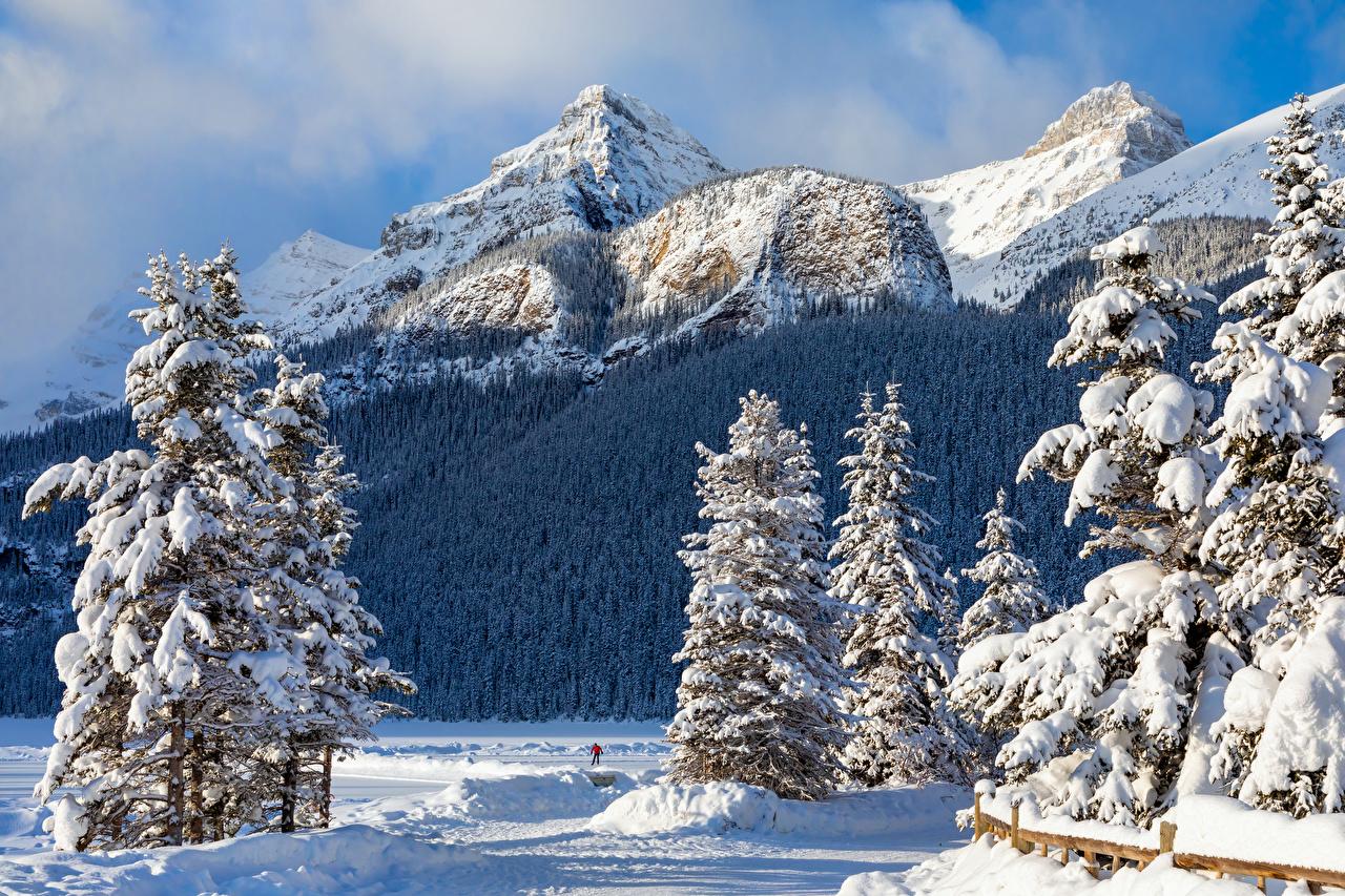 Фото Банф Канада Ель Зима Горы Природа парк Снег ели гора зимние Парки снега снегу снеге