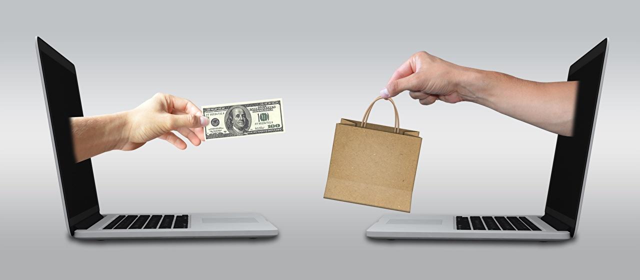 Фотография Ноутбуки Купюры Доллары Сумка Деньги Серый фон Компьютеры Банкноты