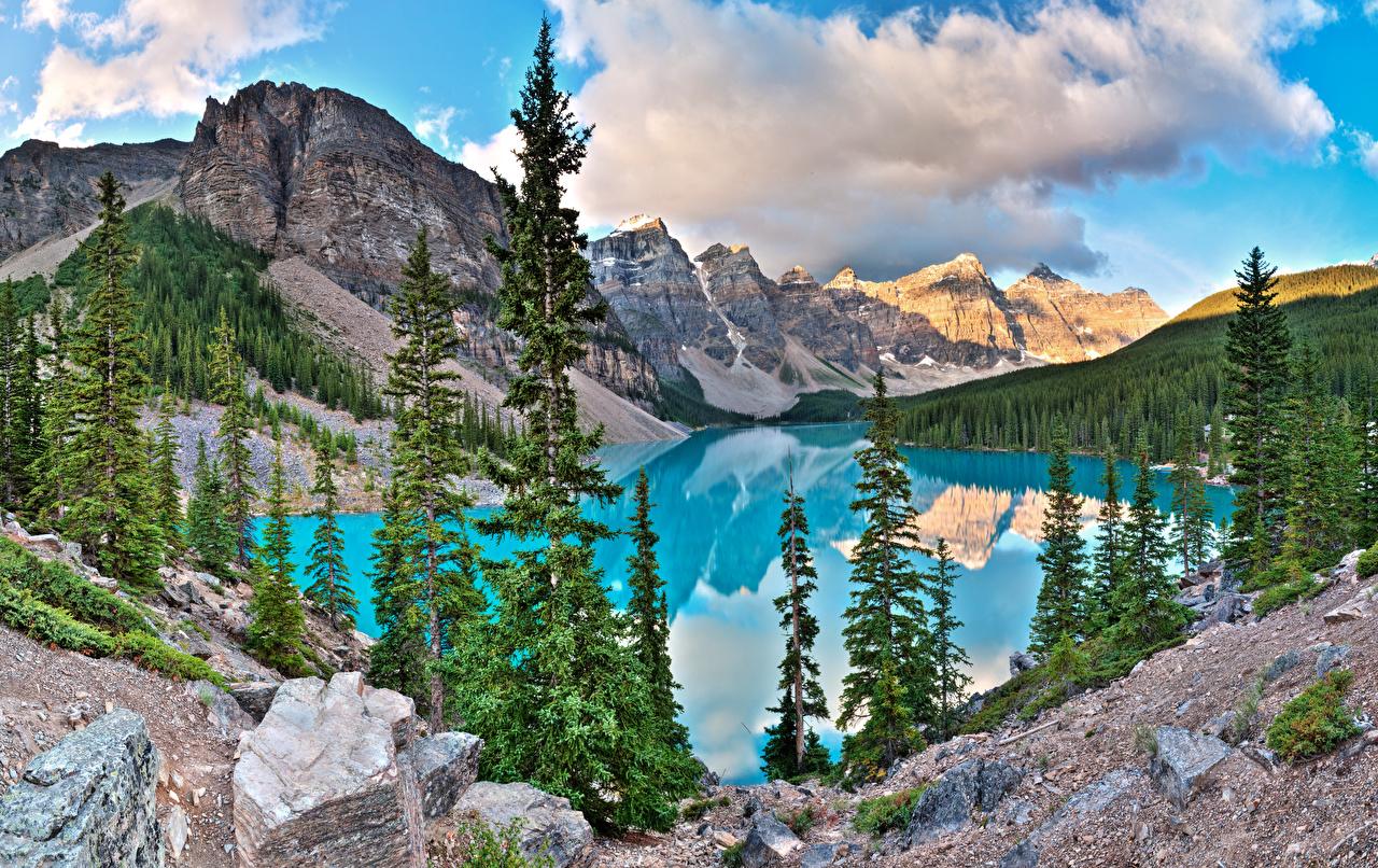 Фото Банф Канада Alberta ели Горы Природа Озеро Парки Пейзаж Камни Ель гора парк Камень