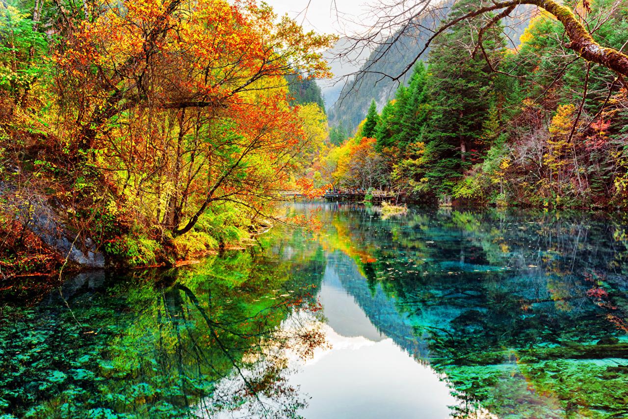 Фотография Цзючжайгоу парк Китай Осень Природа Леса Парки Озеро Пейзаж осенние лес парк