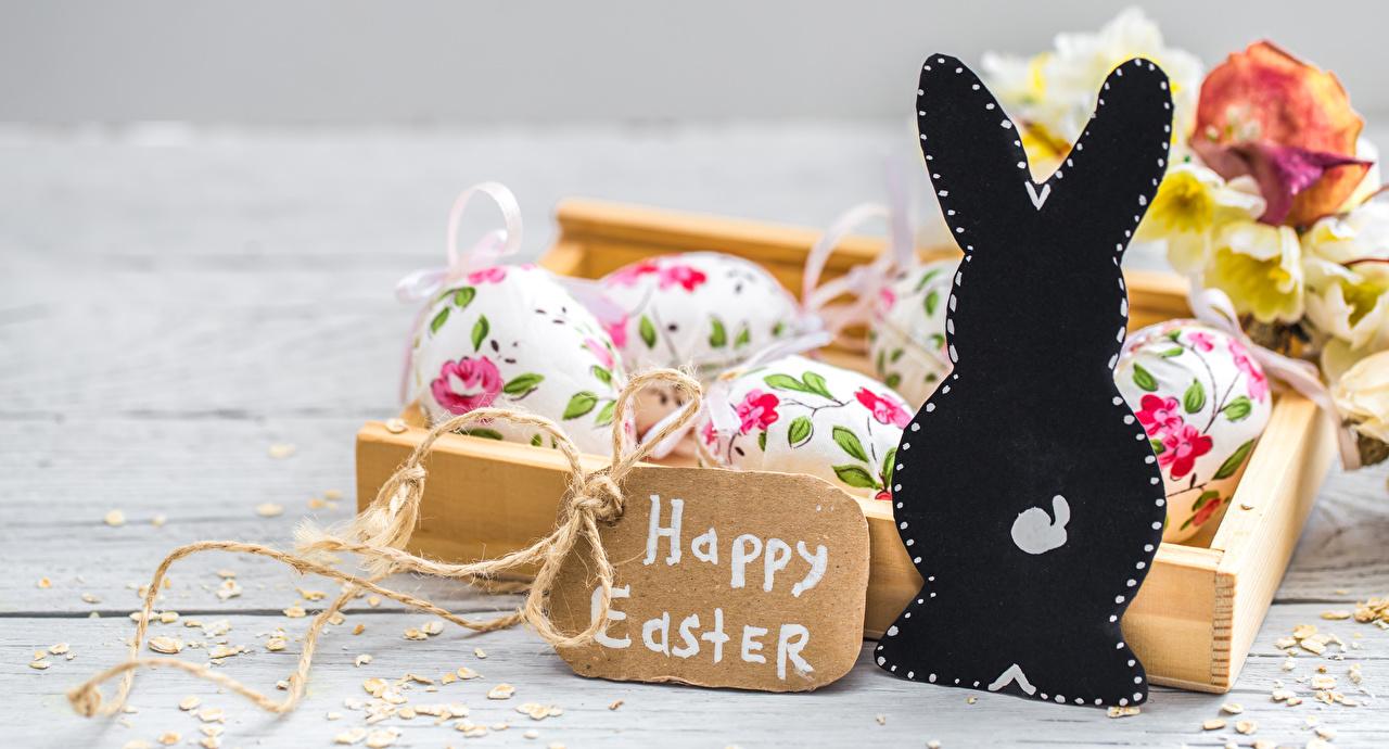 Фотографии Пасха Кролики Английский Яйца Слово - Надпись кролик английская инглийские яиц яйцо яйцами слова текст