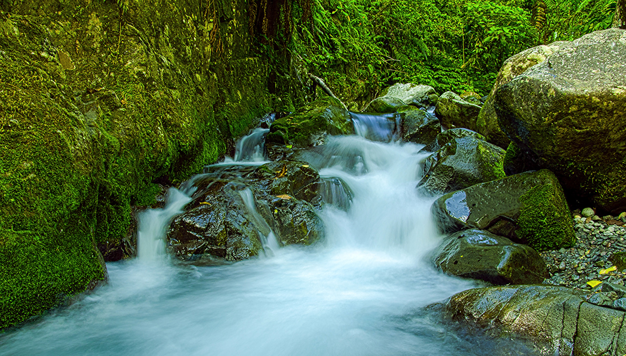 Фото Мексика Tres Marias Природа Водопады мха Камни Мох мхом Камень