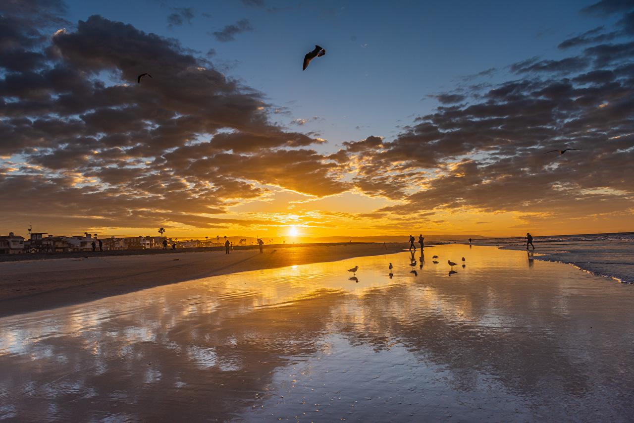 Фотография Калифорния штаты Newport Beach Солнце Природа Небо рассвет и закат берег Облака калифорнии США америка солнца Рассветы и закаты Побережье облако облачно