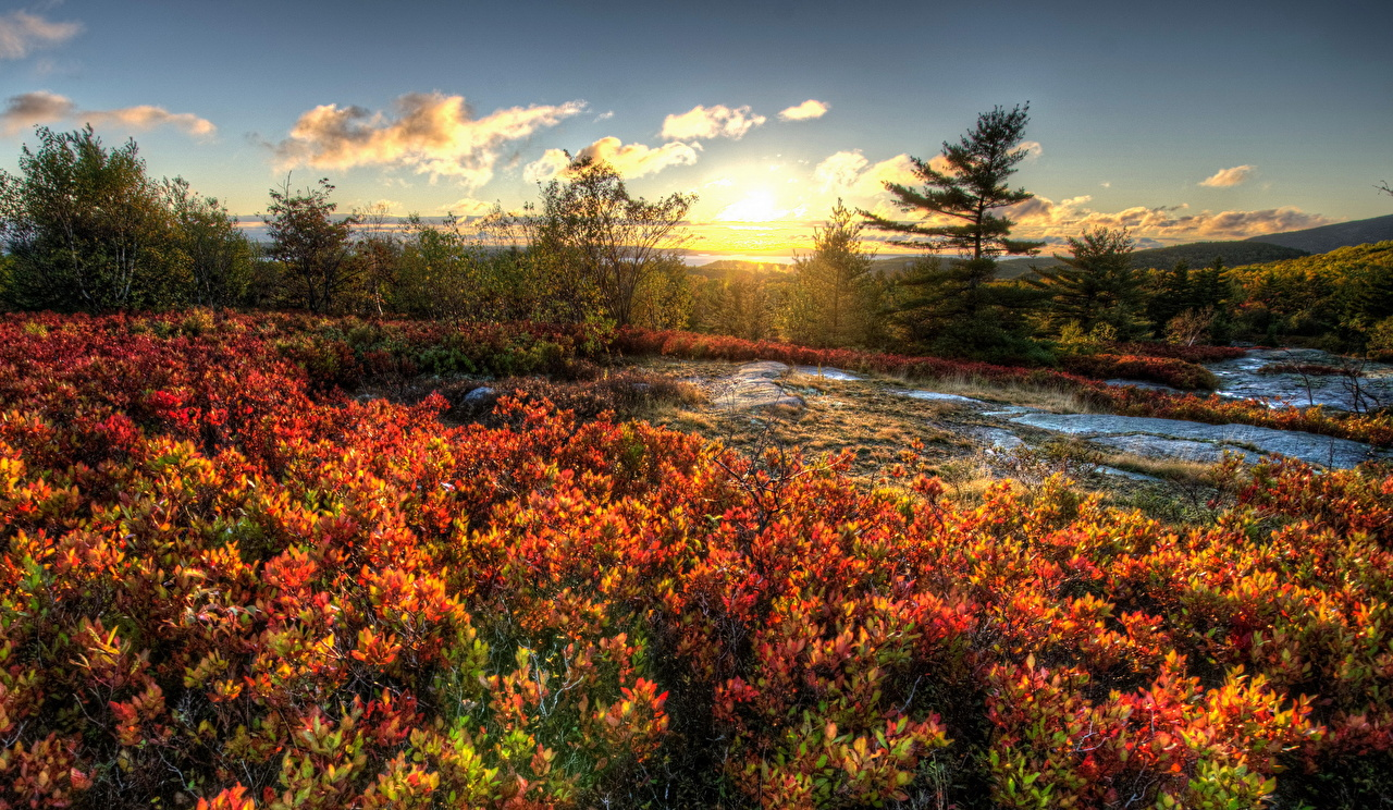 Фото США Acadia Природа Парки Пейзаж штаты америка парк