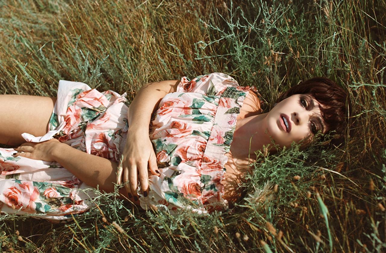 Обои для рабочего стола Шатенка лежа девушка рука траве смотрит Платье шатенки Лежит лежат лежачие Девушки молодые женщины молодая женщина Руки Трава Взгляд смотрят платья