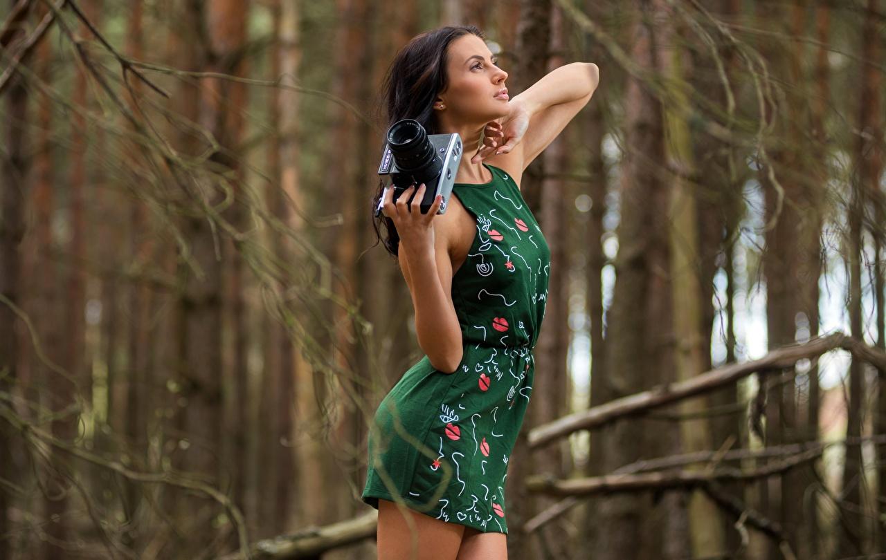 Картинка брюнеток фотокамера боке Поза Девушки Руки Платье брюнетки Брюнетка Фотоаппарат Размытый фон позирует девушка молодая женщина молодые женщины рука платья