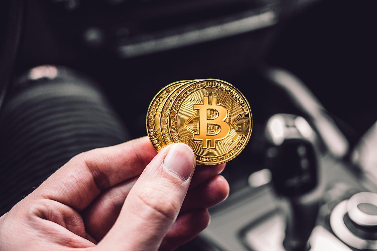 Картинка Монеты Биткоин Размытый фон рука Пальцы Деньги Bitcoin боке Руки
