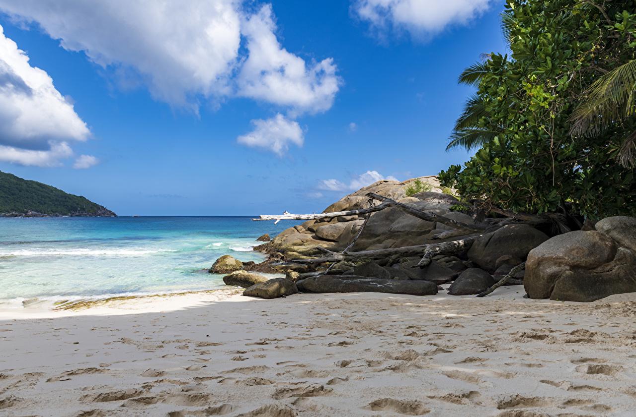 Фото Police Beach Seychelles Пляж Природа Песок Тропики Камни Камень
