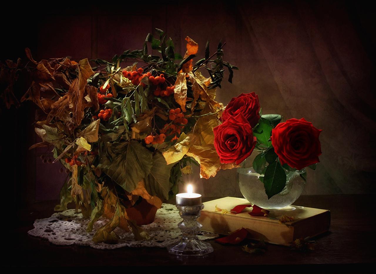 Фотография Листья Розы Рябина Красный цветок Ваза Книга Свечи Натюрморт лист Листва роза красных красная красные Цветы вазе вазы книги