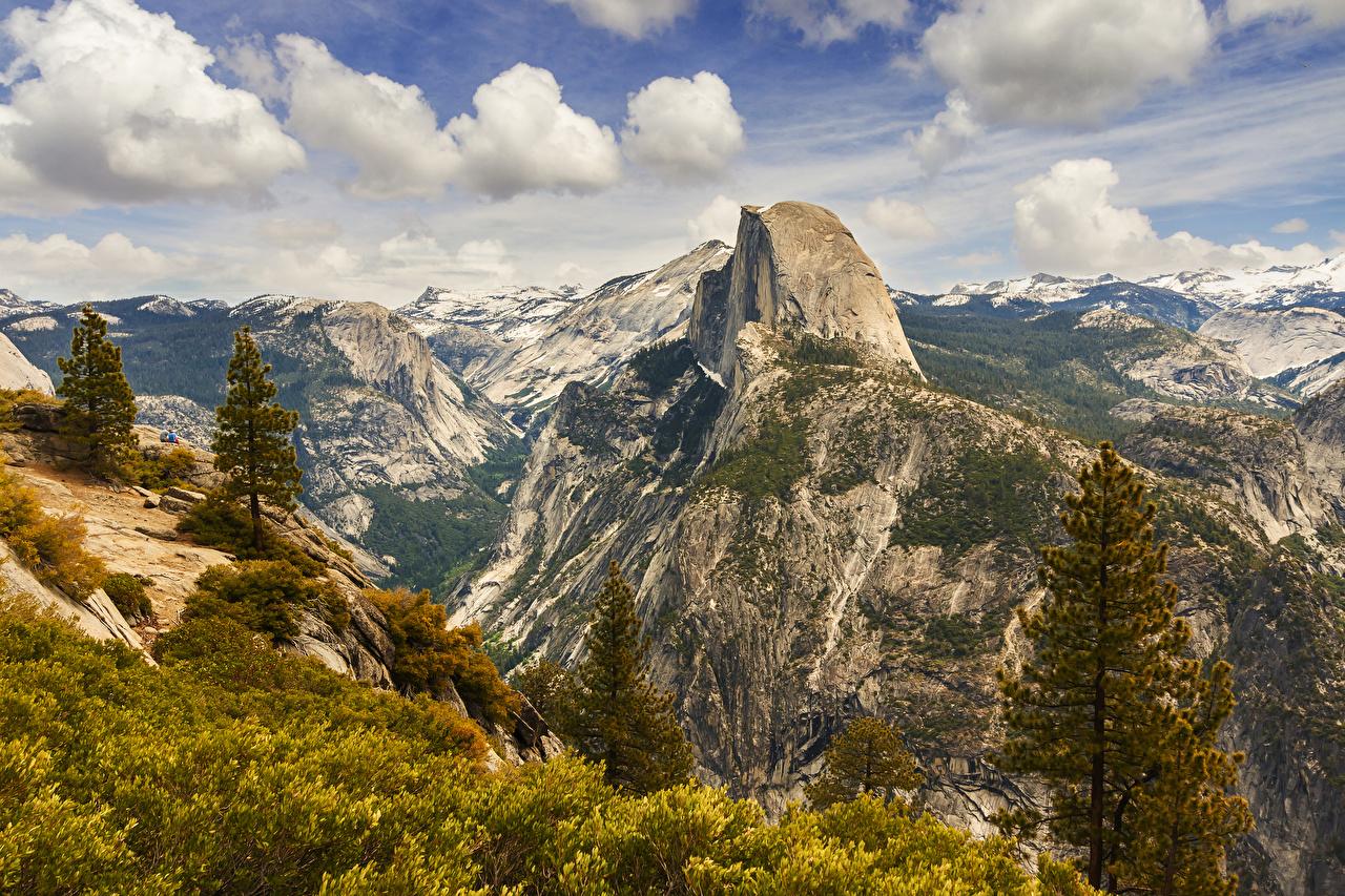 Обои Йосемити штаты Ель Горы Природа Парки США
