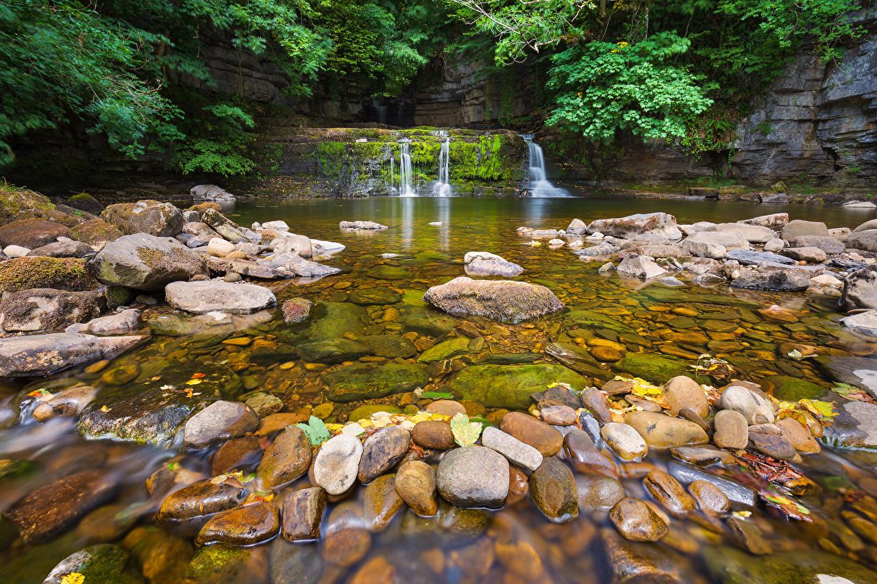 Фотографии Англия Ручей Природа Водопады Парки Камни ручеек парк Камень