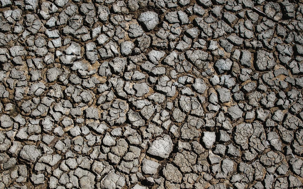 Фотографии земли Текстура сухая Земля сухой Сухие