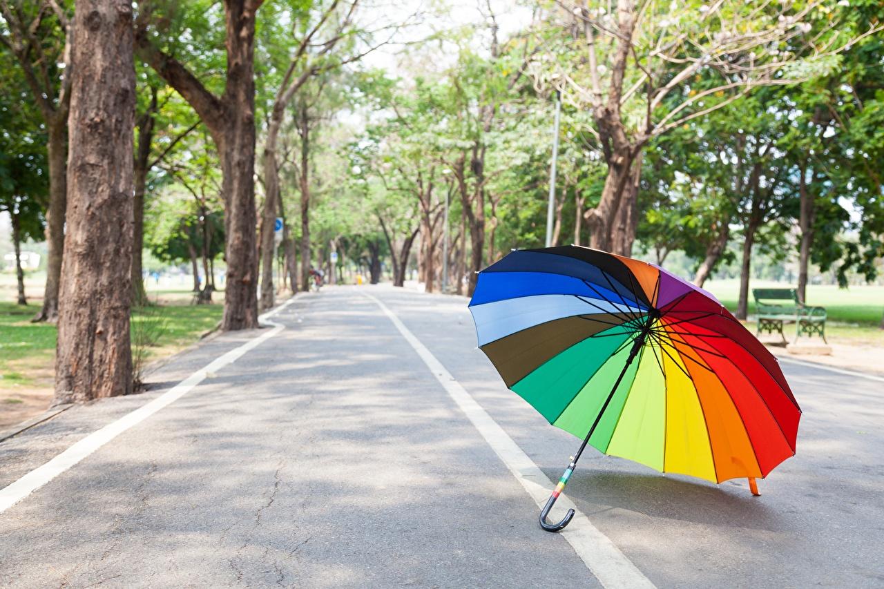 Обои для рабочего стола Радуга Дороги зонтик радуги Зонт зонтом