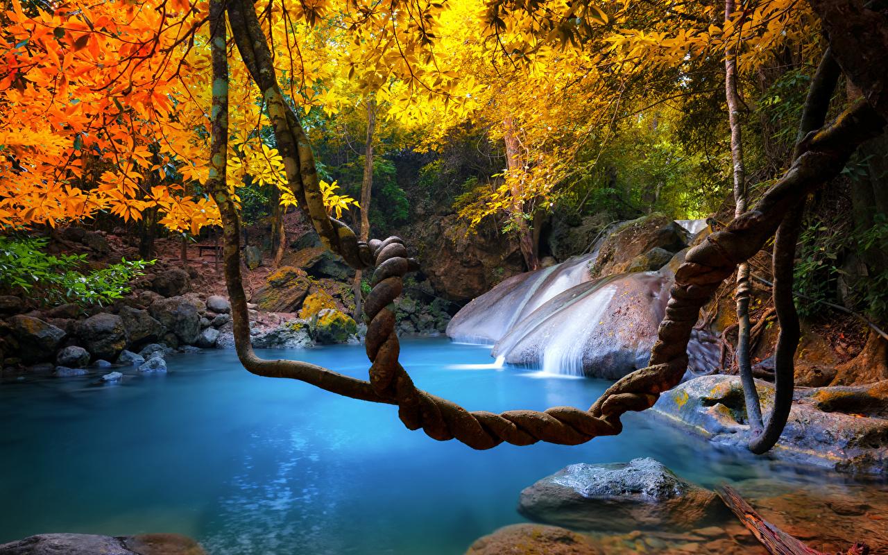 Фотографии Таиланд Природа осенние Водопады Тропики ветвь Осень Ветки