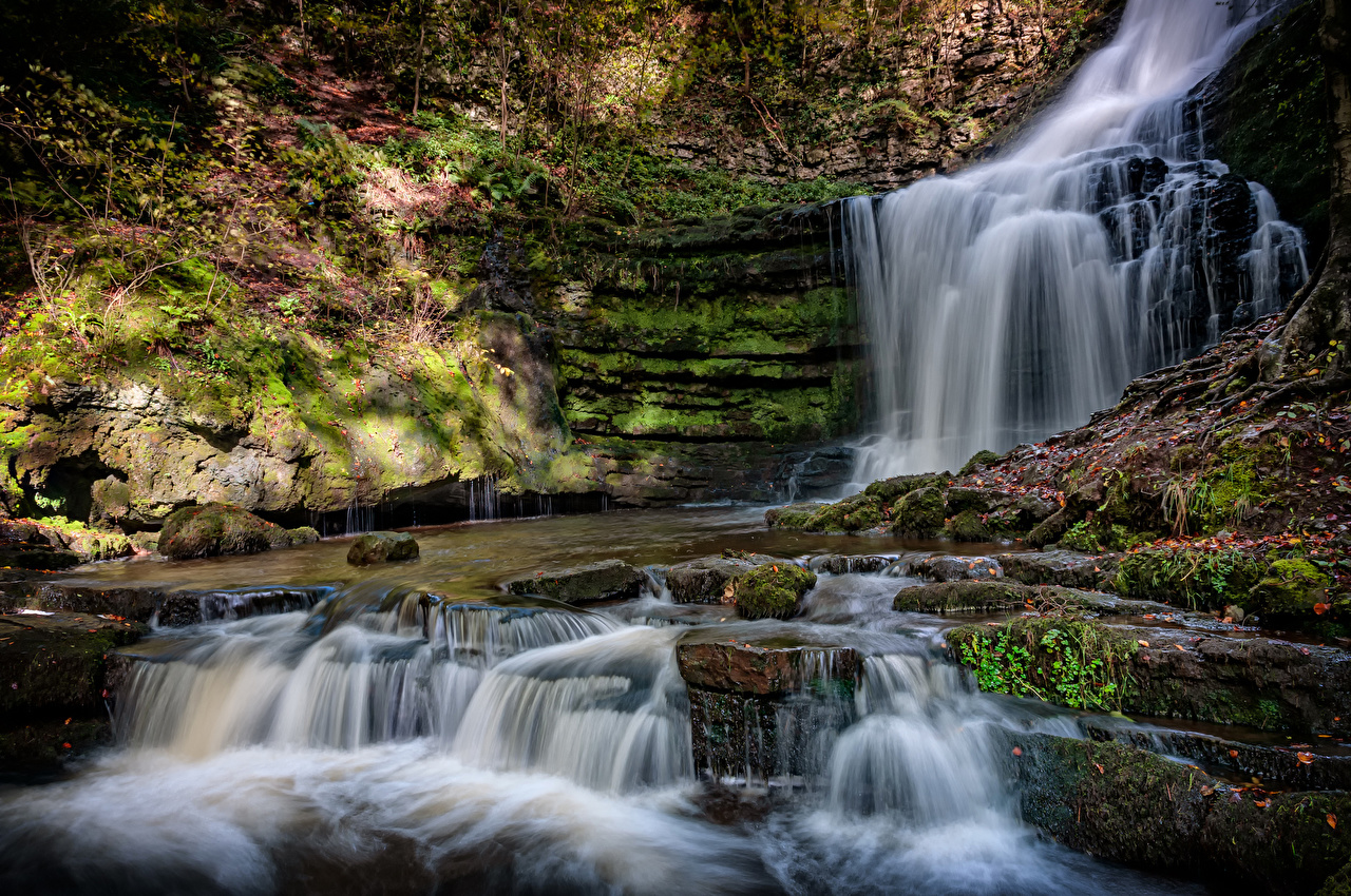 Картинки Англия County Durham Скала Природа Водопады Мох Утес скале скалы мха мхом