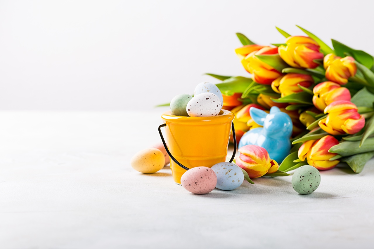 Обои для рабочего стола Пасха яиц ведре Тюльпаны цветок яйцо Яйца яйцами Ведро ведра тюльпан Цветы