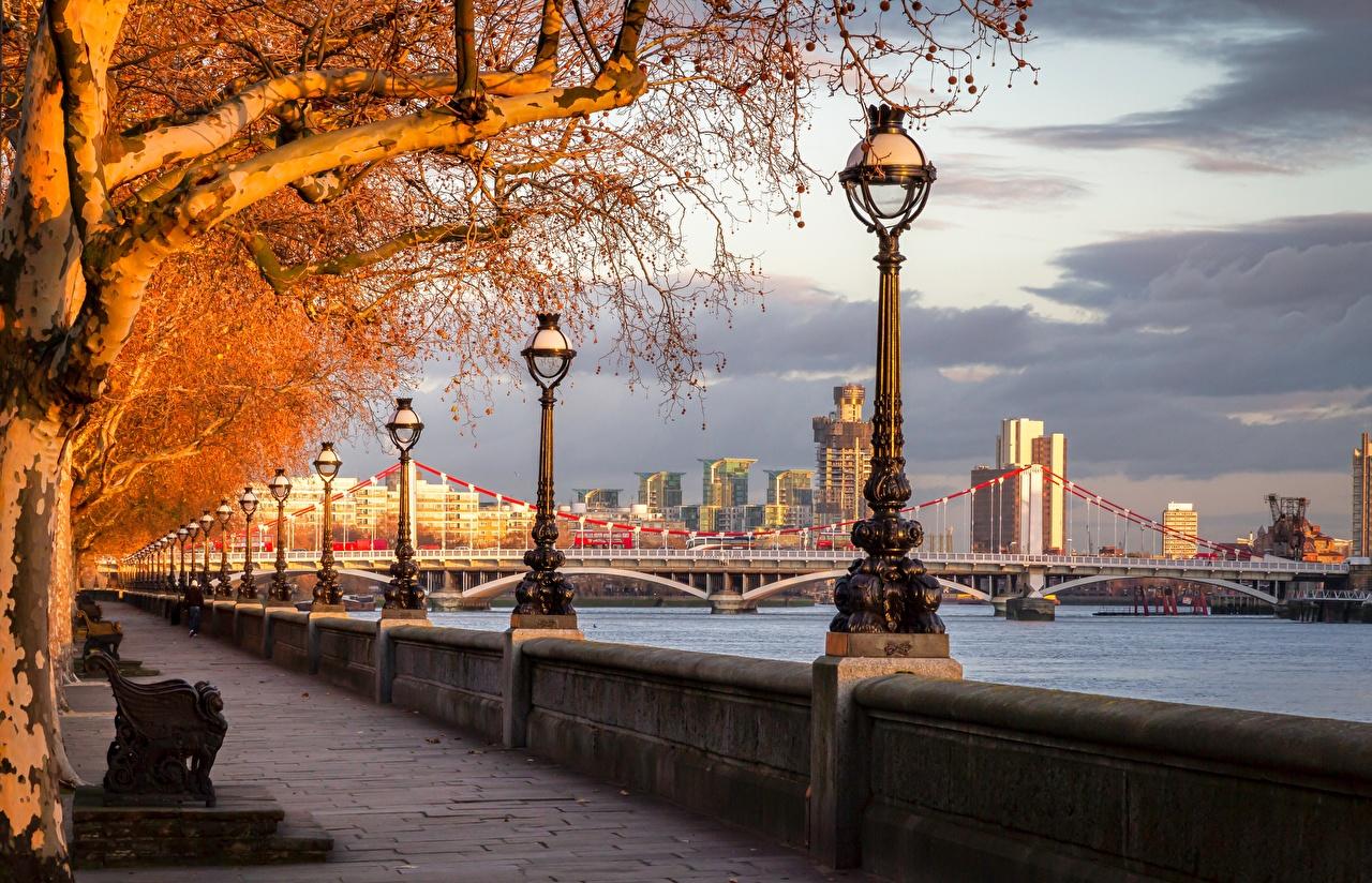 Фотографии Лондон Англия River Thames, Chelsea Bridge мост Осень Реки набережной Уличные фонари город деревьев лондоне Мосты осенние река речка Набережная дерево дерева Города Деревья