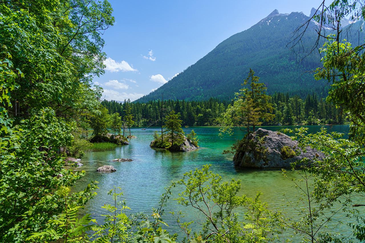 Фотографии Бавария Германия гора Природа лес Озеро ветвь Камни Горы Леса ветка Ветки Камень на ветке