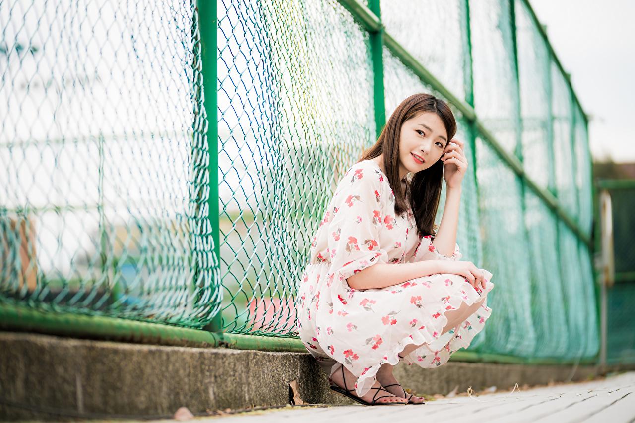 Фотография шатенки Девушки Азиаты забором сидящие смотрят Платье Шатенка девушка молодые женщины молодая женщина Забор забора ограда азиатка азиатки сидя Сидит Взгляд смотрит платья