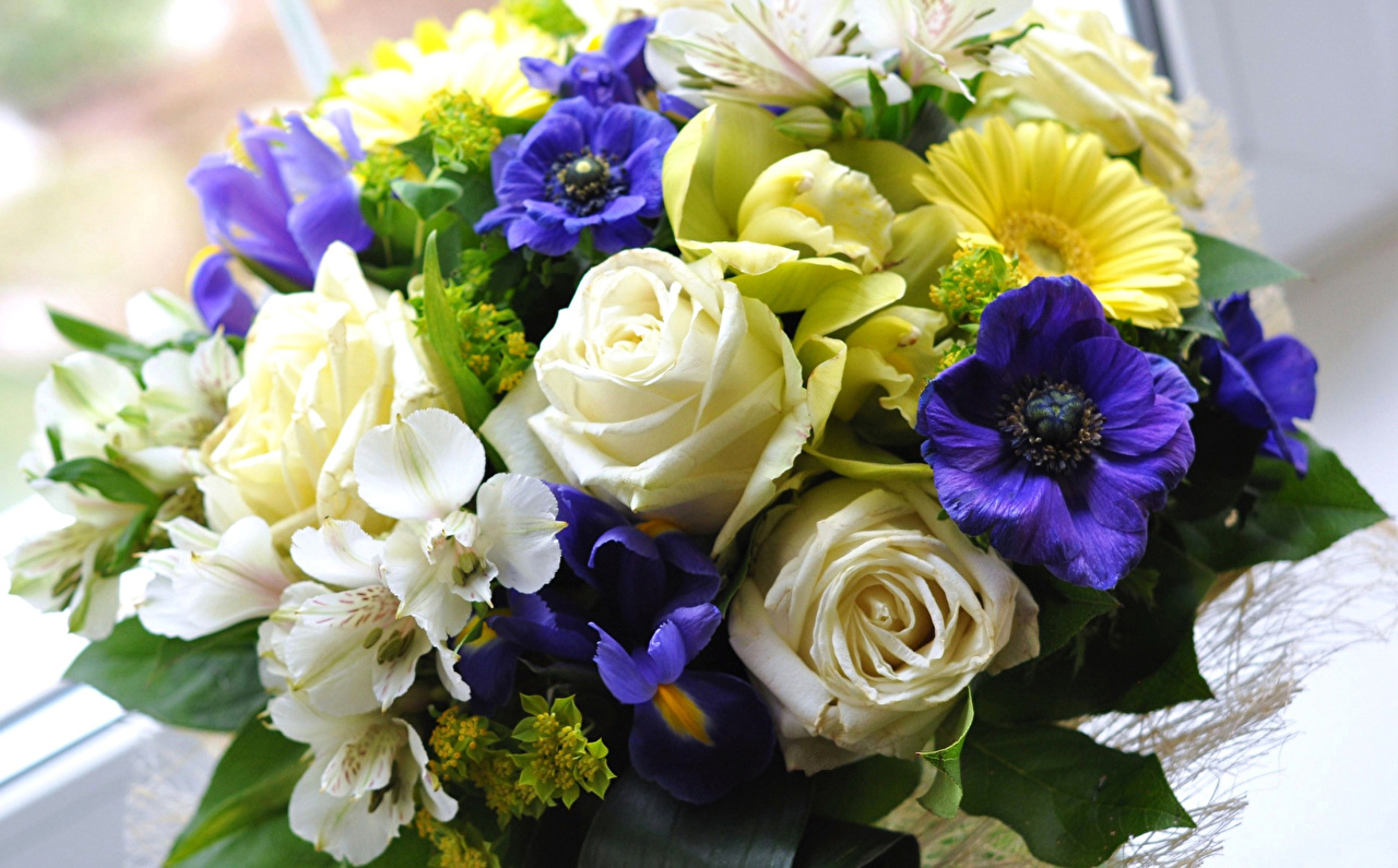 орхидеи фото цветов букеты