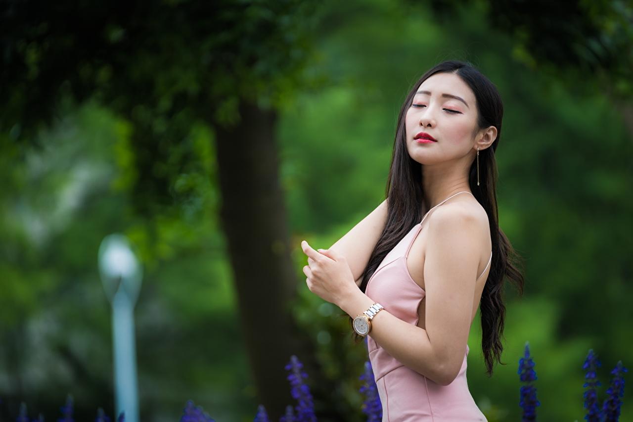 Фото брюнетки Размытый фон Поза Волосы молодые женщины Азиаты Платье брюнеток Брюнетка боке позирует волос Девушки девушка молодая женщина азиатка азиатки платья