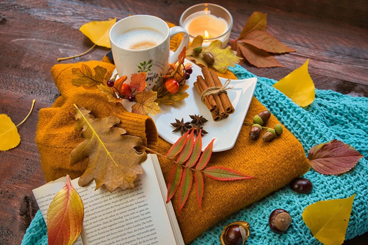 Фотографии Листья Жёлудь Кофе Осень Природа книги кружки Орехи лист Листва осенние Книга Кружка кружке