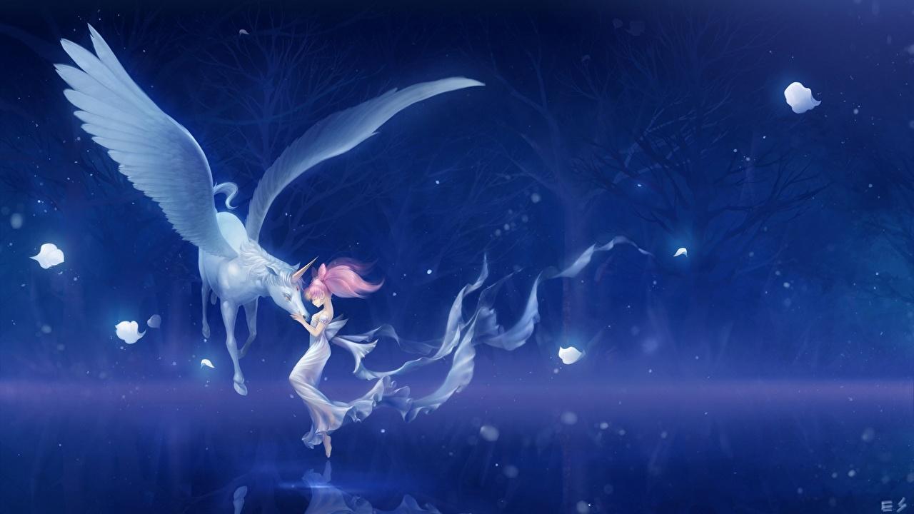 Фото Sailor Moon Девочки Пегас Единороги Крылья bishoujo senshi, chibi usa, pegasus ребёнок Аниме ночью Сверхъестественные существа животное Сейлор Мун девочка Дети Ночь в ночи Ночные Животные