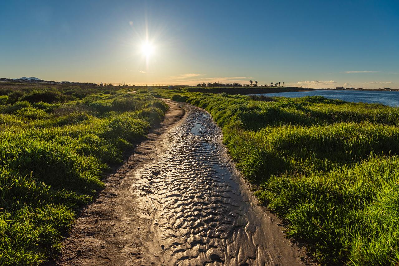 Картинка Калифорния штаты Huntington Beach Солнце Природа Рассветы и закаты траве Побережье калифорнии США америка солнца рассвет и закат берег Трава