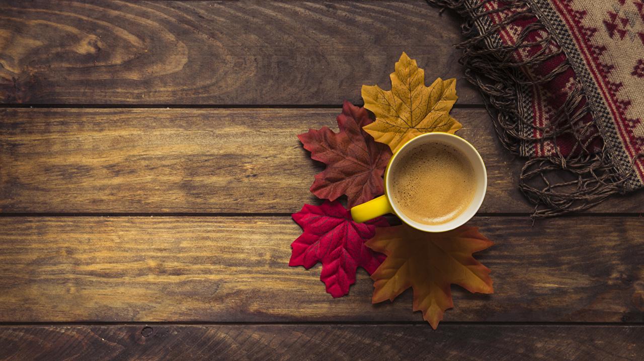 Фотография Листья Кофе Осень Еда чашке Доски лист Листва осенние Пища Чашка Продукты питания