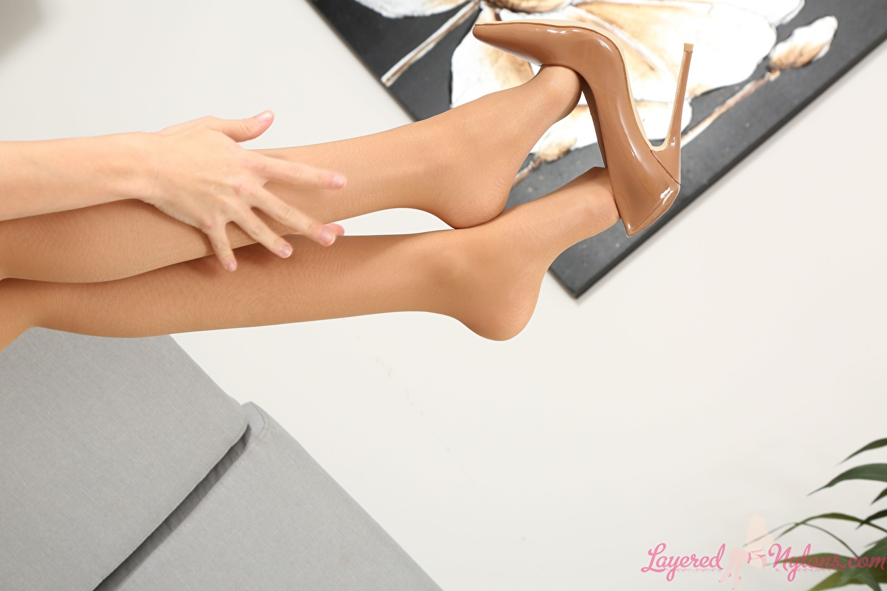 Фотография Колготки молодая женщина ног Руки Крупным планом туфлях колготок колготках девушка Девушки молодые женщины Ноги рука вблизи Туфли туфель