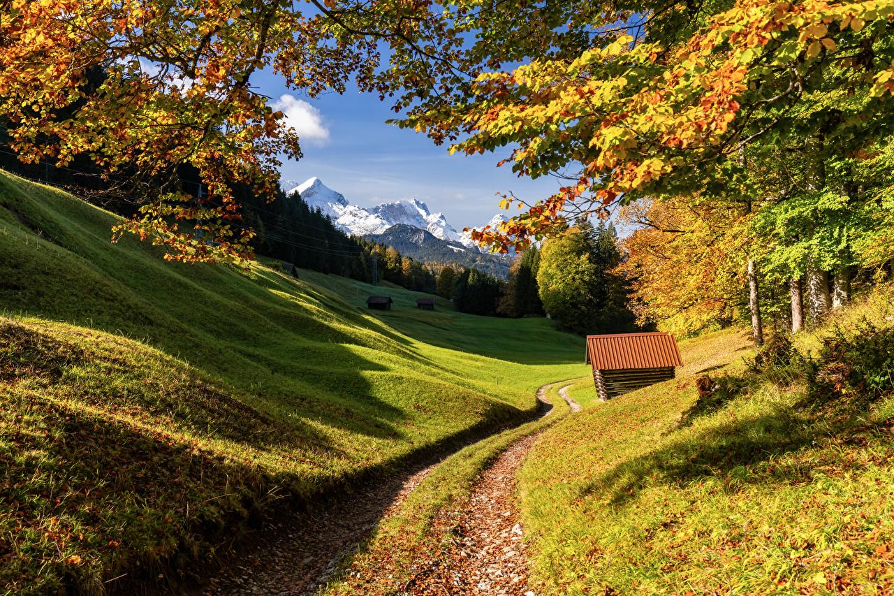 Картинка Бавария альп Германия Upper Bavaria Горы Осень Природа деревьев Альпы гора осенние дерево дерева Деревья