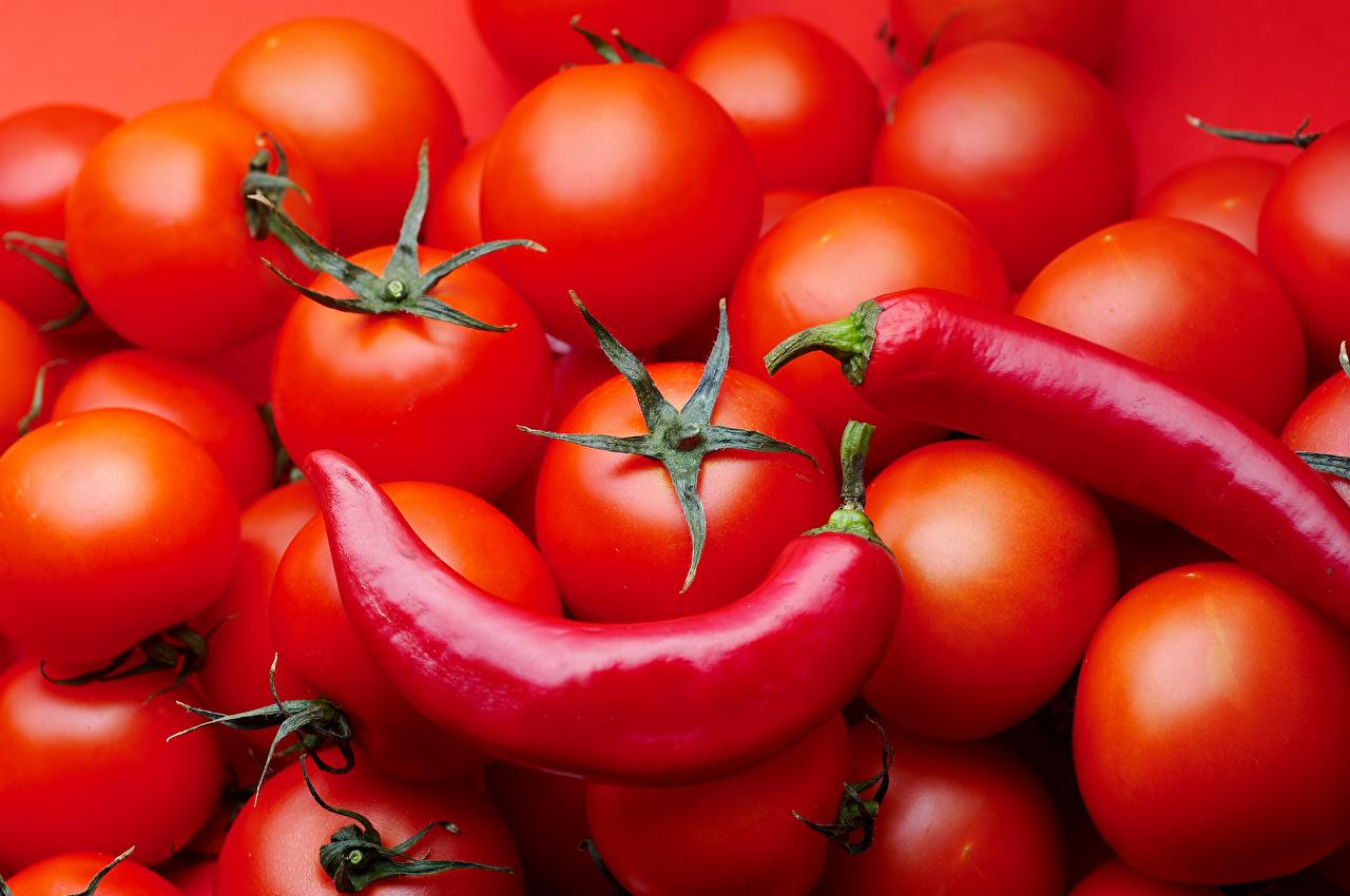 Фотография Красный Помидоры Острый перец чили Еда Томаты красных красная красные Пища Продукты питания
