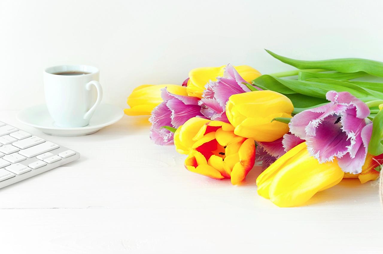 Фото Разноцветные Букеты Кофе Тюльпаны цветок Пища чашке букет тюльпан Цветы Еда Чашка Продукты питания