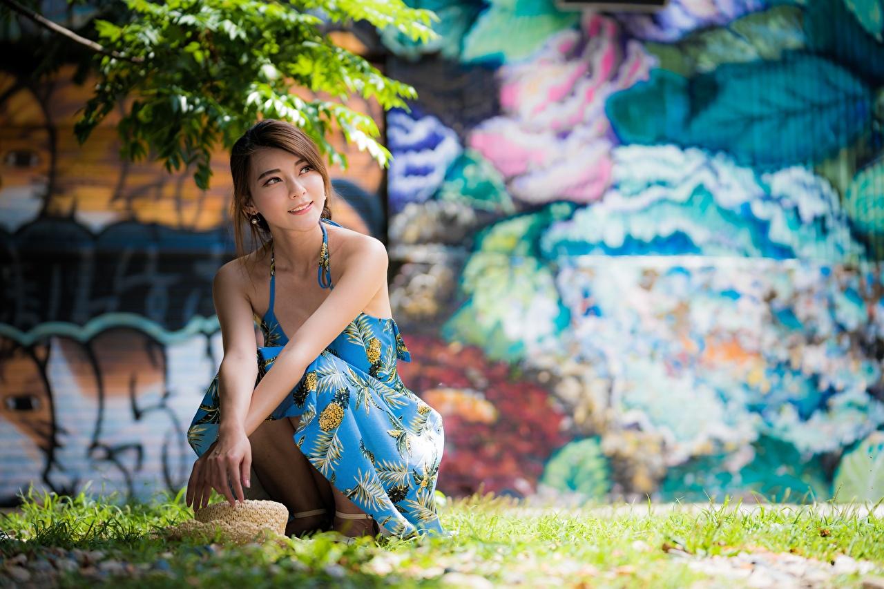 Фотография Шатенка Размытый фон шляпы девушка азиатки траве Сидит Платье шатенки боке Шляпа шляпе Девушки молодая женщина молодые женщины Азиаты азиатка сидя Трава сидящие платья