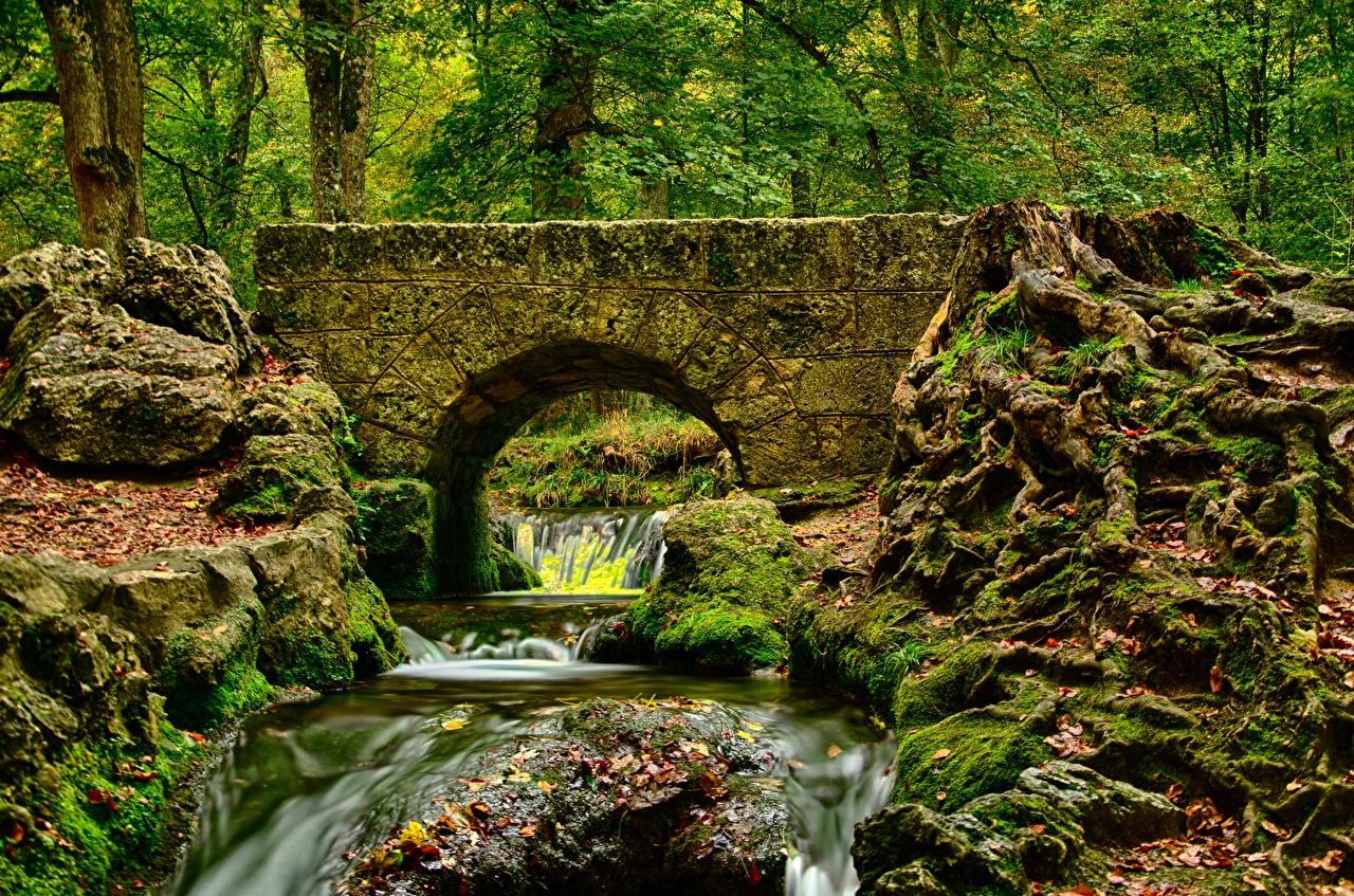 Фотографии HDR Осень Ручей Мосты Природа мхом Камни HDRI мост ручеек осенние Мох мха Камень