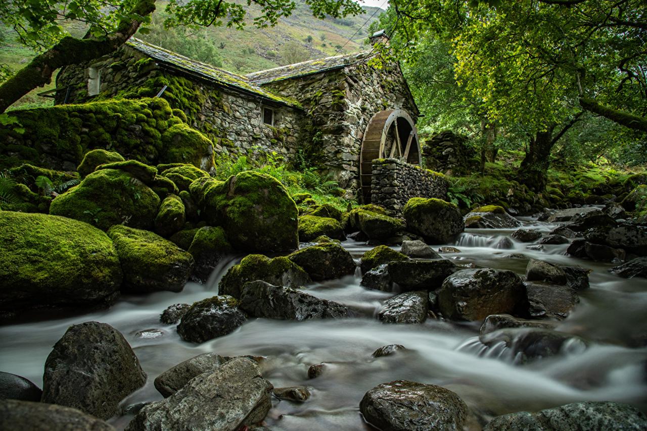 Фотография Англия Водяная мельница Lake District, Cumbria Природа Парки Мох Реки Камни дерева парк мха река мхом речка Камень дерево Деревья деревьев