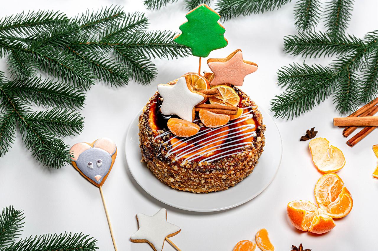 Фото Новый год Звездочки Торты Мандарины Ветки Печенье Продукты питания дизайна Рождество Еда Пища ветка ветвь на ветке Дизайн