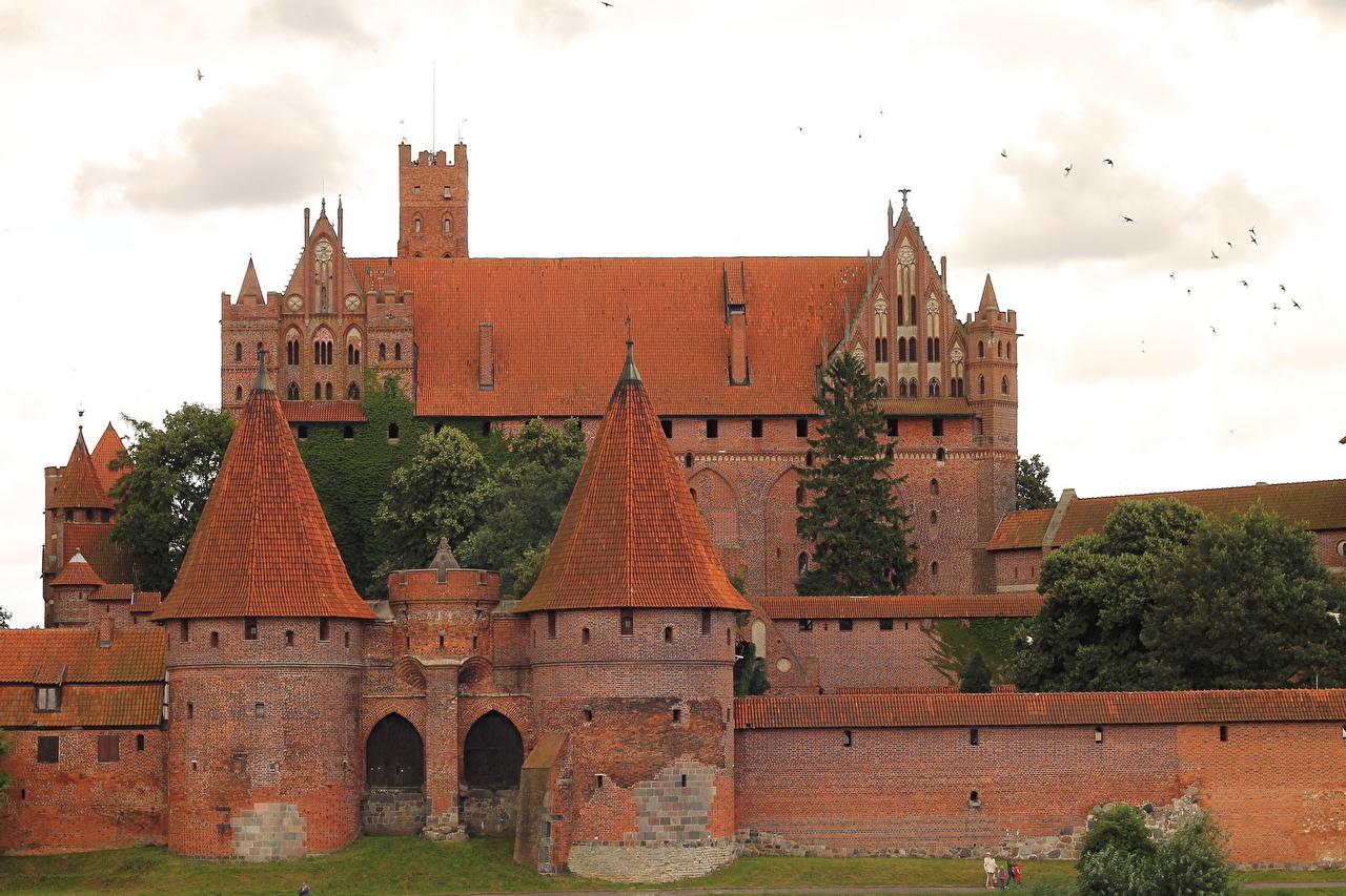 Фото Польша Malbork замок Кирпичный город Замки из кирпича Города