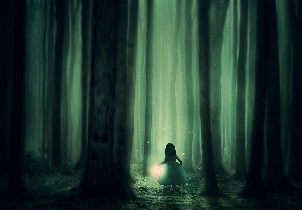 Фото Девочки Туман Фантастика Леса Ствол дерева Ночь Лампа Фэнтези Ночные