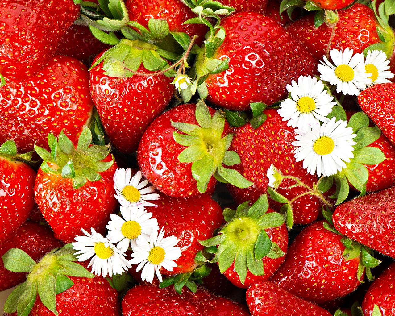 Картинки красных Клубника Еда Фрукты Много красная красные Красный Пища Продукты питания