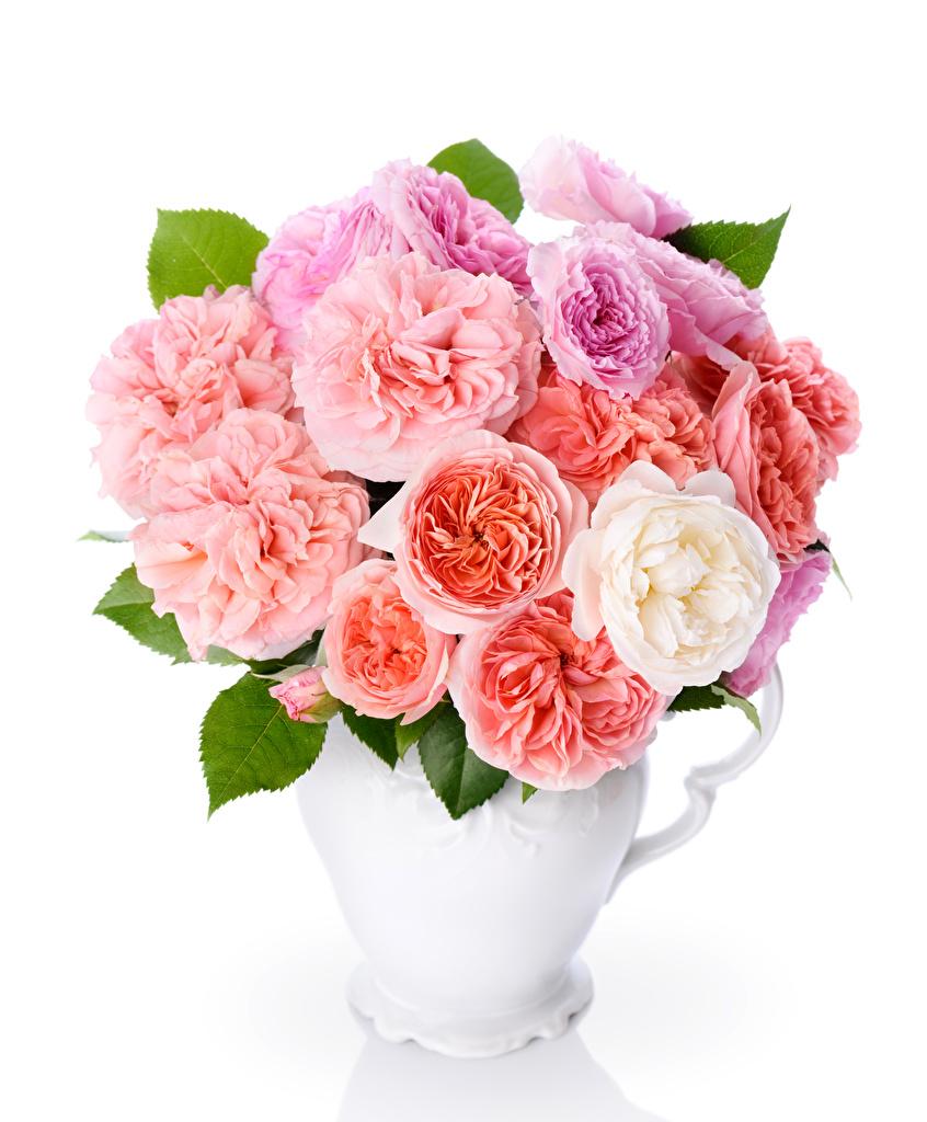 Картинка Букеты Розы Цветы вазы белом фоне  для мобильного телефона букет роза цветок Ваза вазе Белый фон белым фоном