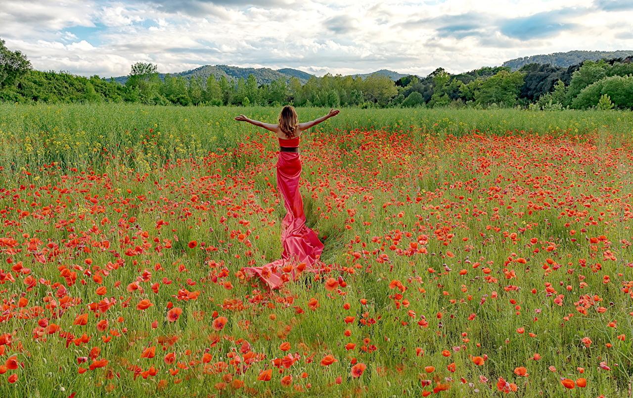 Картинки Природа Девушки Поля Маки Цветы платья девушка молодые женщины молодая женщина мак цветок Платье